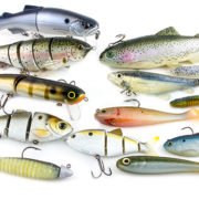 swimbaits-for-bass-fishing-guide-1
